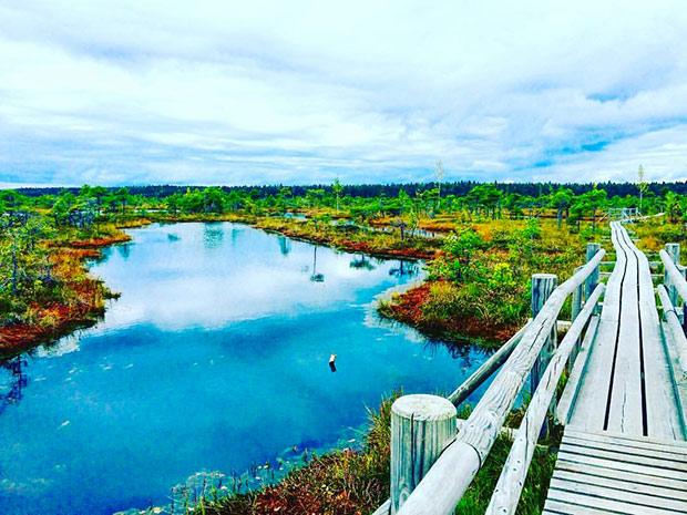 etudiant-polytech-erasmus-Lituanie_paysage