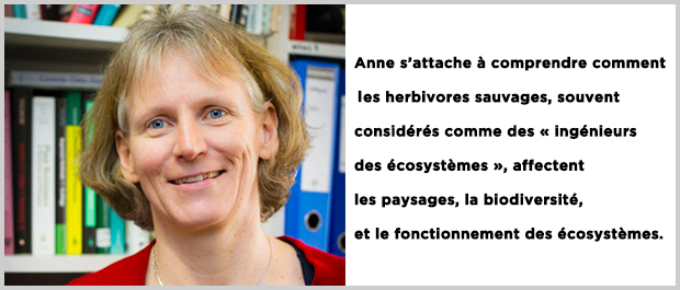 anne-slide3
